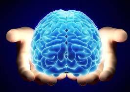 Xơ Não Tủy Rải Rác